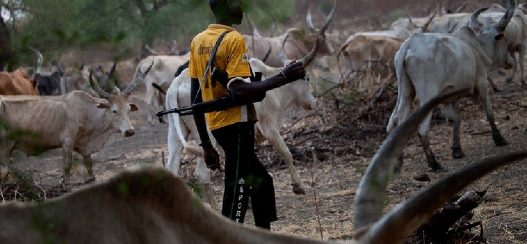 The incessant kidnappings and killing in Nigeria by the Fulani herdsmen have become almost second nature to the residents of select regions of the country.