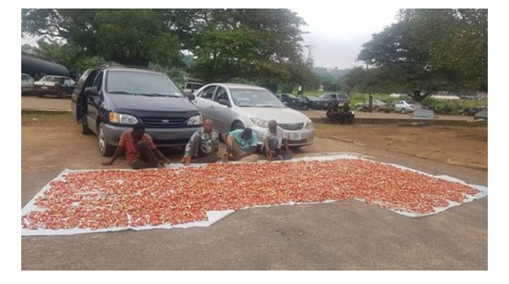 Police Recover Live Cartridges From Suspected Criminals